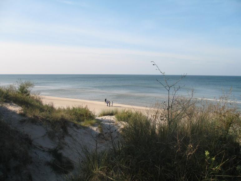 Plaża z wydmami