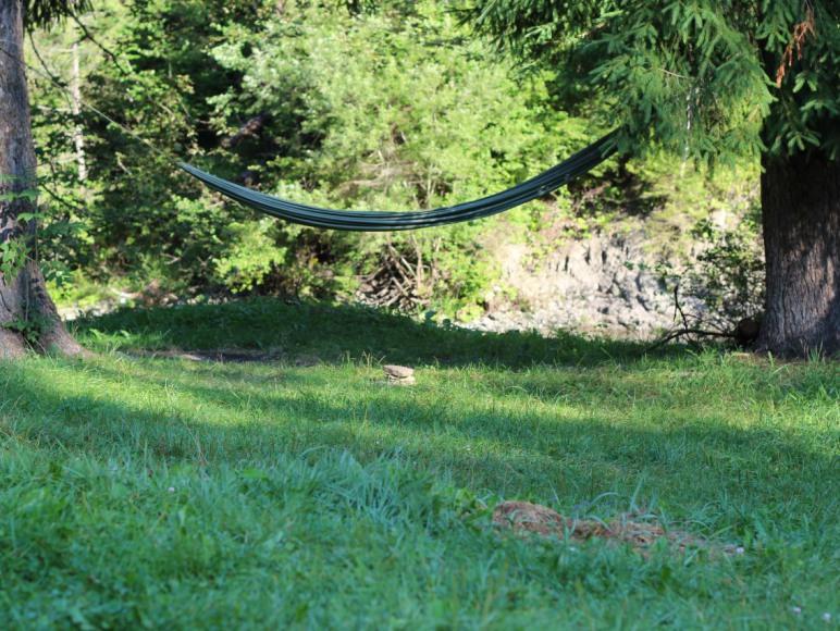 Pole namiotowe Nad Rzeką