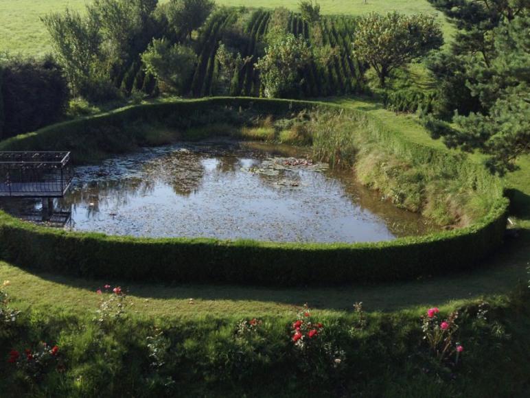Zielona Żabka - noclegi Bieszczady