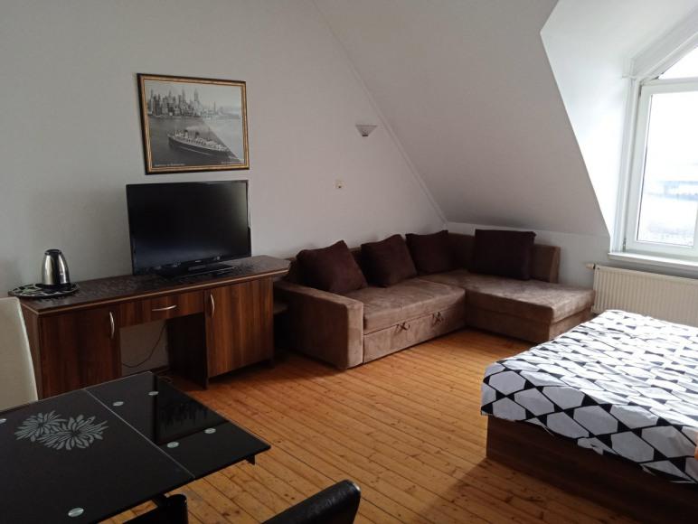 apartament dla 3-4 osób z dużym łożem małżeńskim, rozsuwaną sofą, łazienką,
