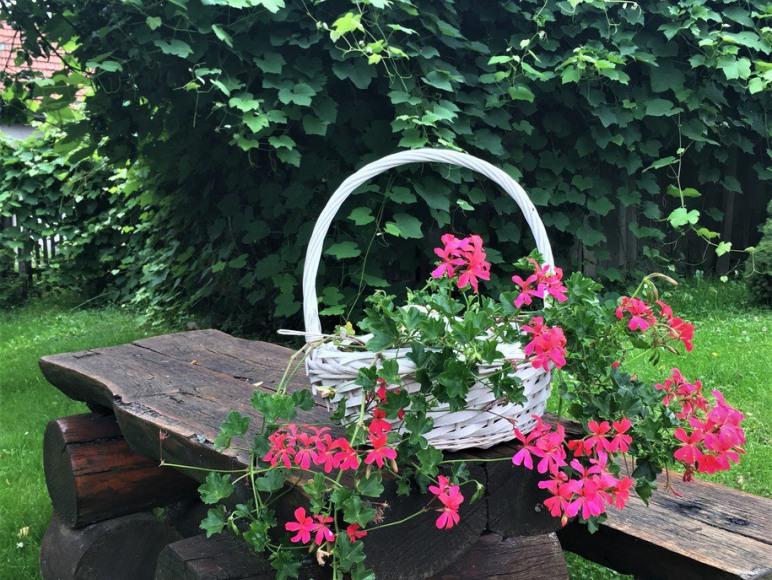Ogród, ławeczka