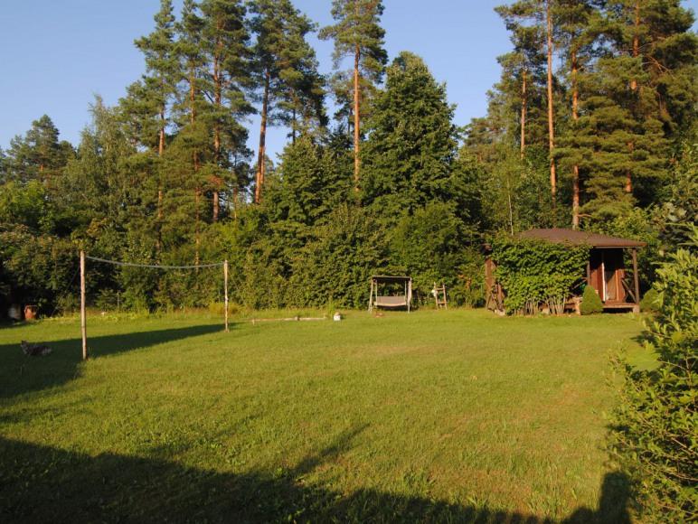 Domek przy lesie