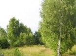 Noclegi Stromiec u Heni