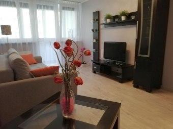 Mieszkanie/Apartament do wynajęcia
