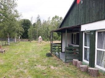 Leśna Chata w Borach Tucholskich.Grzyby !