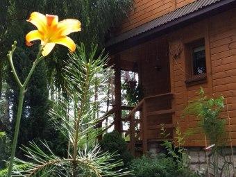 Leśny domek nad Zalewem