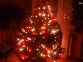 Weihnachten - Dom do wynajęcia blisko jeziora i lasu
