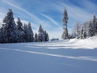 Winterferien - Dom Tu i Teraz