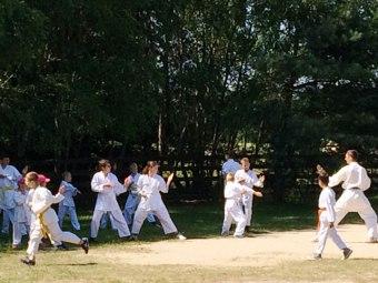 Żurawiniec karate