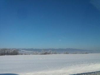 krajobraz zimowy