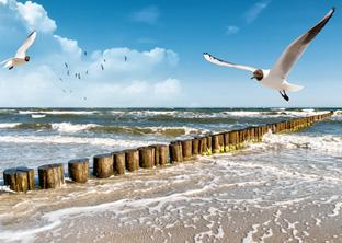 Unterkünfte an der Ostsee